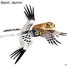 Eastern Marsh Harrier caricature by rohanchak