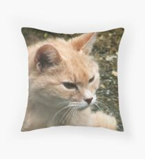 SWEETIE ... Throw Pillow