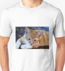 cement Unisex T-Shirt