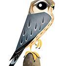 Merlin Falcon caricature by rohanchak
