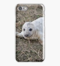 Grey Seal pup iPhone Case/Skin