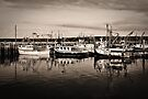 The Fleets in by PhotosByHealy