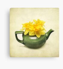 Dreaming About Daffodils  Canvas Print