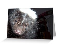 Snoop Peppy SkunkSkunk Greeting Card