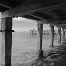 Ryll Pier, Westernport bay by Tracii C Photography