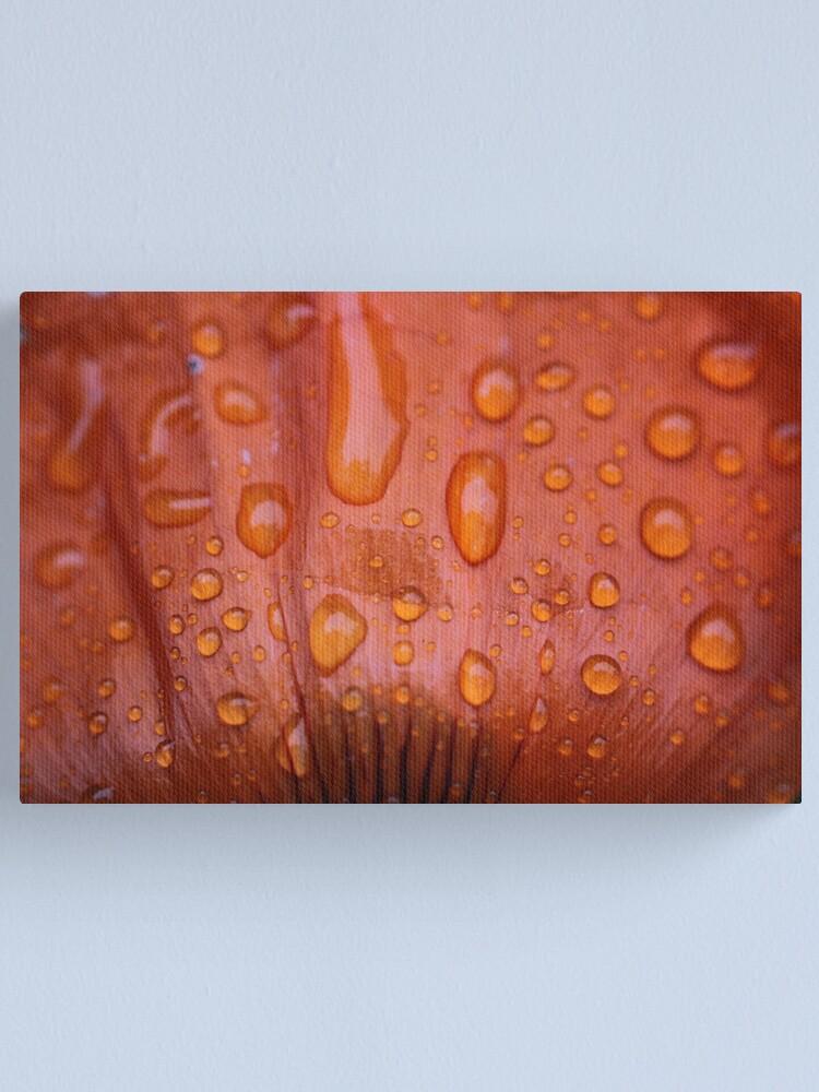 Alternate view of red rain Canvas Print