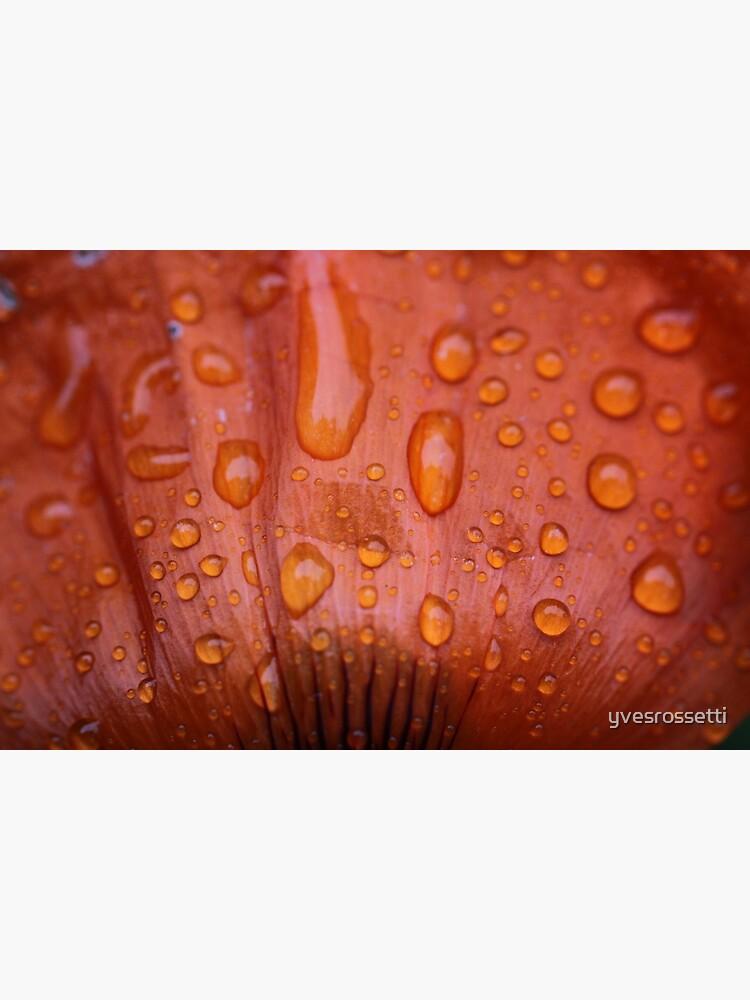 red rain by yvesrossetti