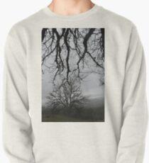 meet Pullover Sweatshirt