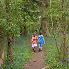 Walking through the bluebells by LaHickmana