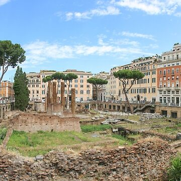 Largo di Torre Argentina Roma by LaHickmana