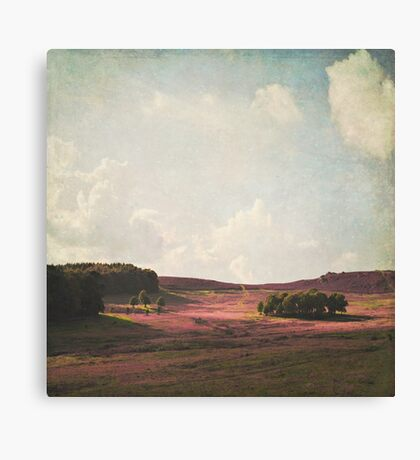 Fields of Heather Canvas Print