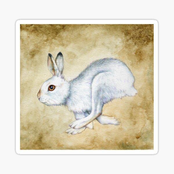Running Mountain Hare Sticker