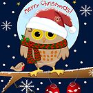 Cute Owl with Santa hat and text by walstraasart