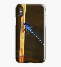 Teeter Totter iPhone Case/Skin