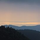 Peaceful Afternoon Blue Mountains Covered with Trees by Beverly Claire Kaiya