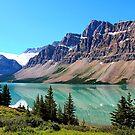 Bow Lake Alberta by Vickie Emms