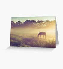Misty Morning on the Dutch Field Greeting Card