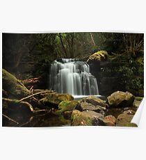 Strickland Falls Poster
