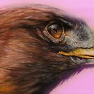 Golden Eagle by Ria Spencer
