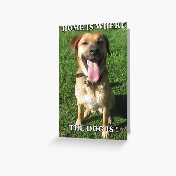 Home is where the dog is Greeting Card