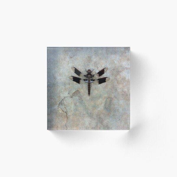 Dragonfly Acrylic Block