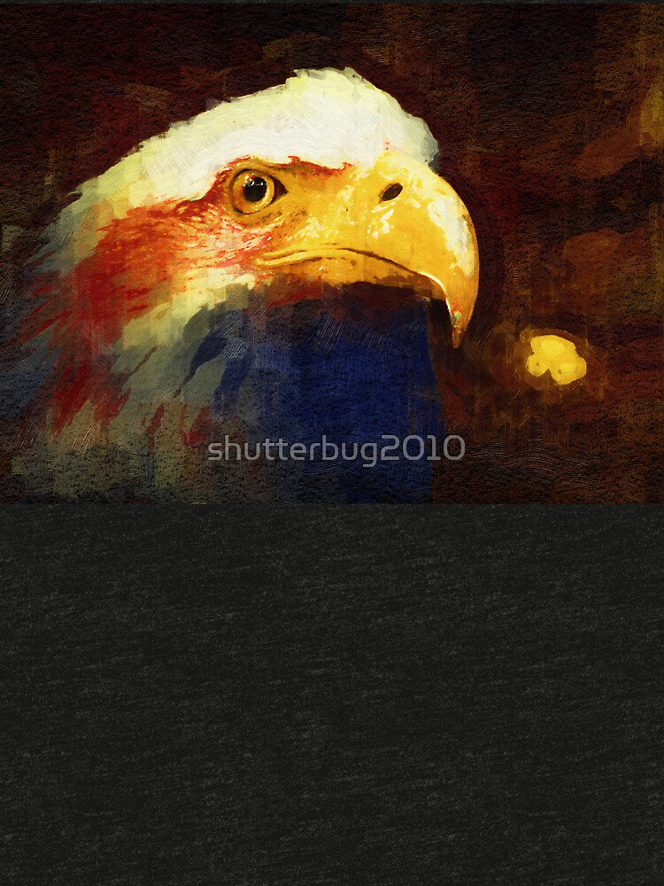 Land of the Free, Home of the Brave by shutterbug2010