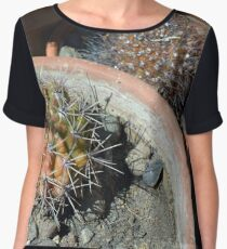 Cacti in flower pots Women's Chiffon Top