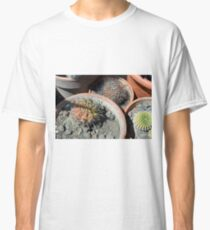 Cacti in flower pots Classic T-Shirt