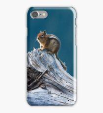 Chipmunk surveys iPhone Case/Skin