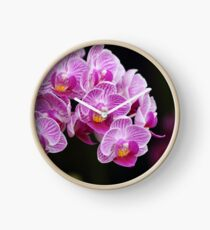 Pink and white orchids Clock