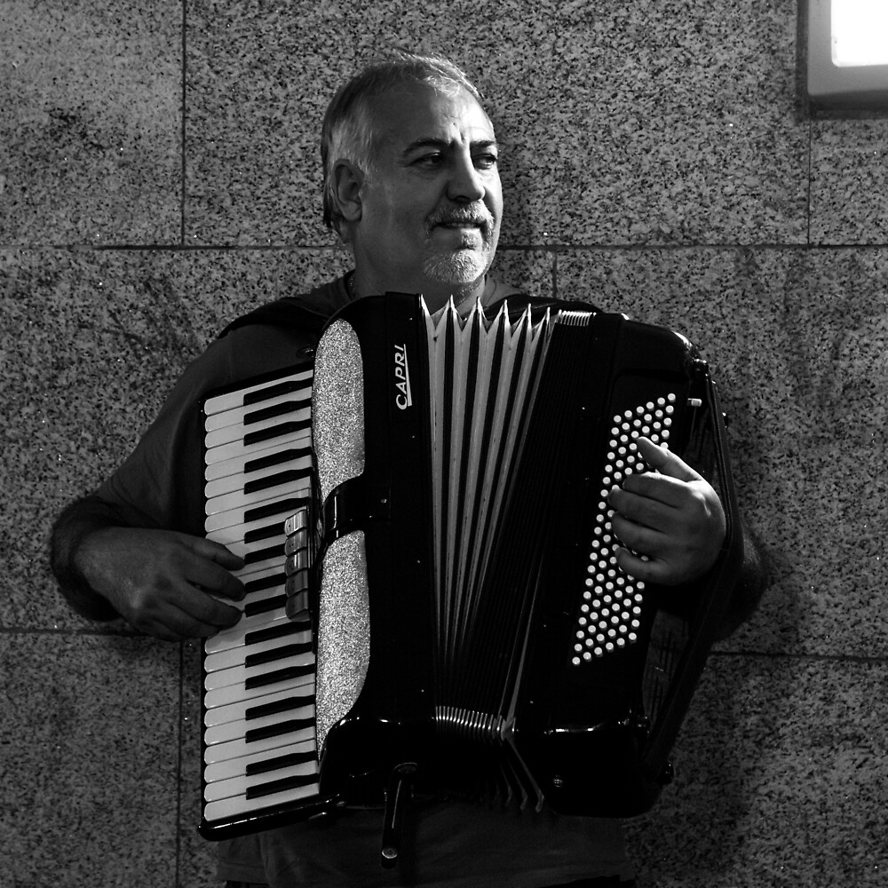 The Accordion Player by Ellesscee