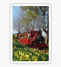 Talyllyn narrow gauge Steam Locomotive Sticker