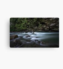 River in India Canvas Print