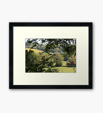 View from the Plot Framed Print