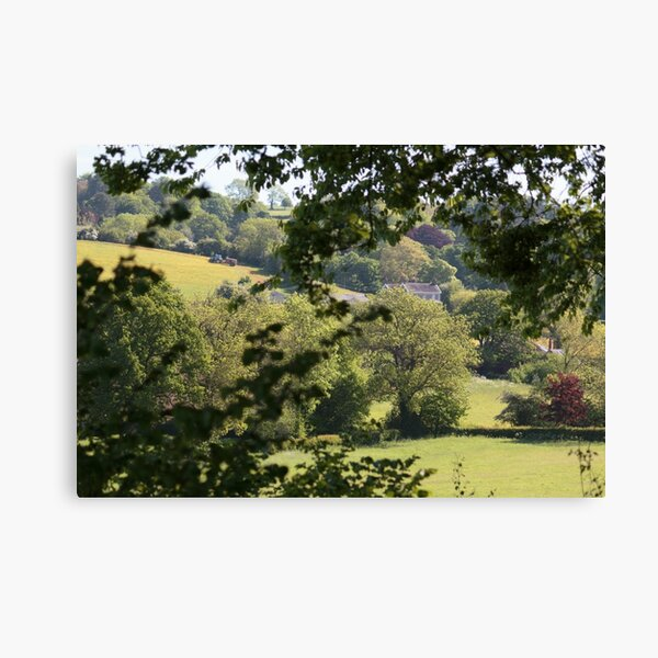 View from the Plot Canvas Print