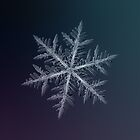 Neon, snowflake macro photo by Alexey Kljatov