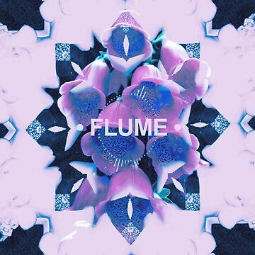FLUME (5) by violenxe