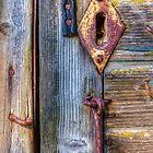 Old and Rusty by Veikko  Suikkanen