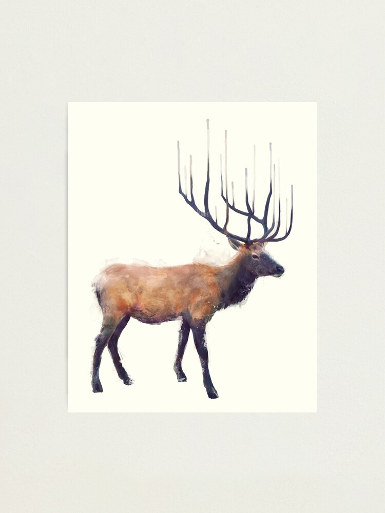 Alternate view of Elk // Reflect Photographic Print