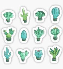Cute cactus and succulents Sticker