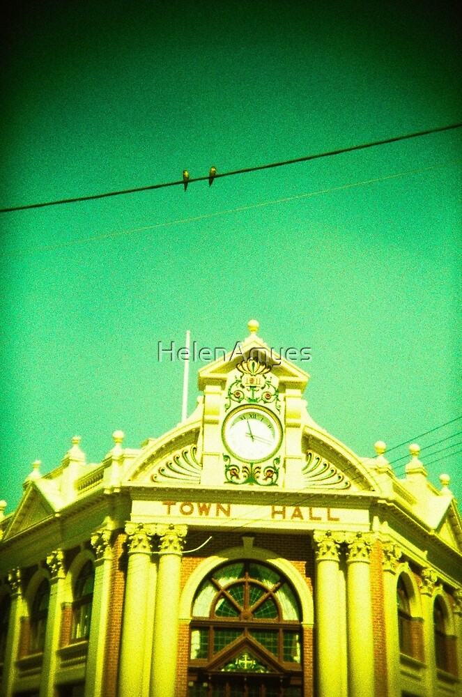 Town Hall Birds by HelenAmyes