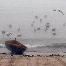 No fish today by iamelmana