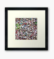 Bubblegum Framed Print