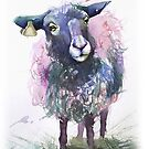 Watercolor sheep by tallula