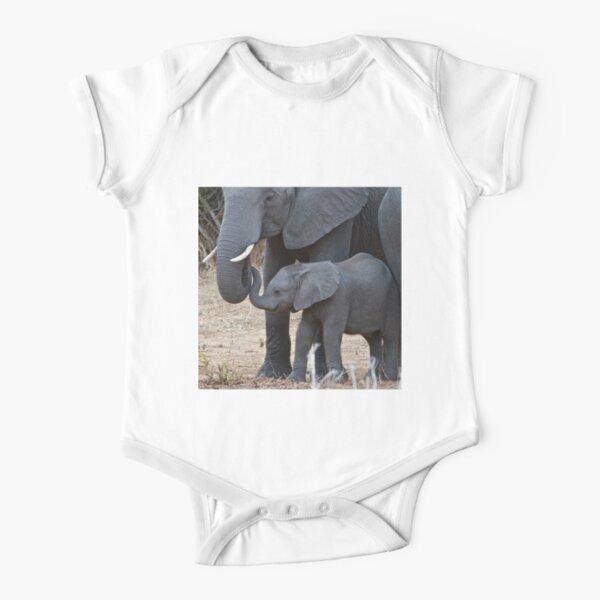 Qiop Nee Egypt Lion Short-Sleeve Shirts Baby Boy