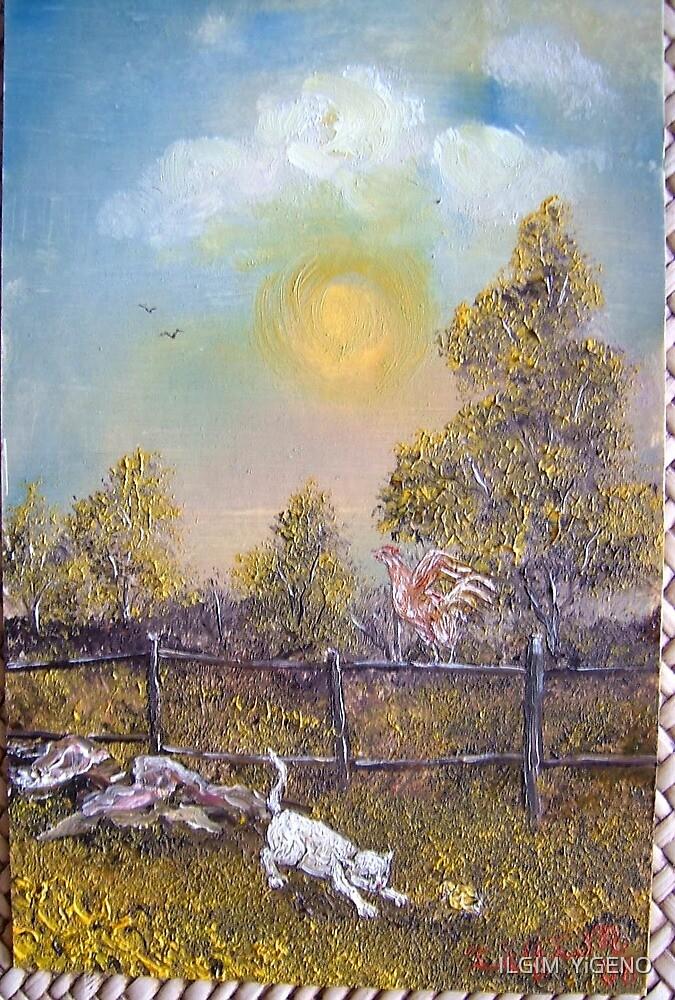 studies of nature by ILGIM  YiGENO