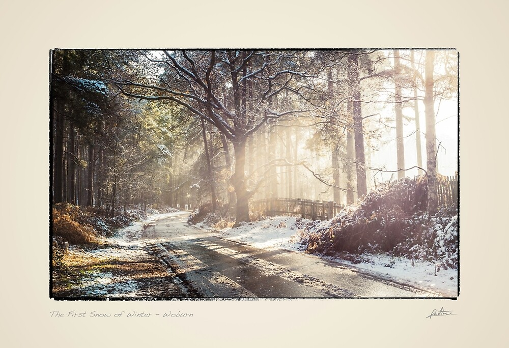 The First Snow of Winter by redtree