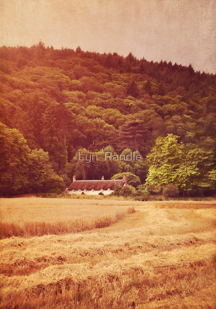 The cottage at the edge of the wood by Lyn  Randle