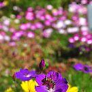 Bee buffet by Karen01