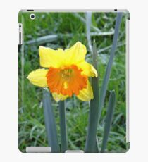 Tattered Daffodil iPad Case/Skin